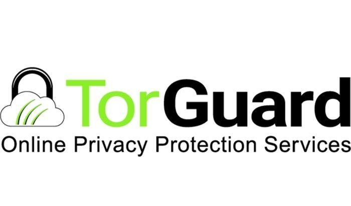 ¿Cuáles son los mejores VPN? 9